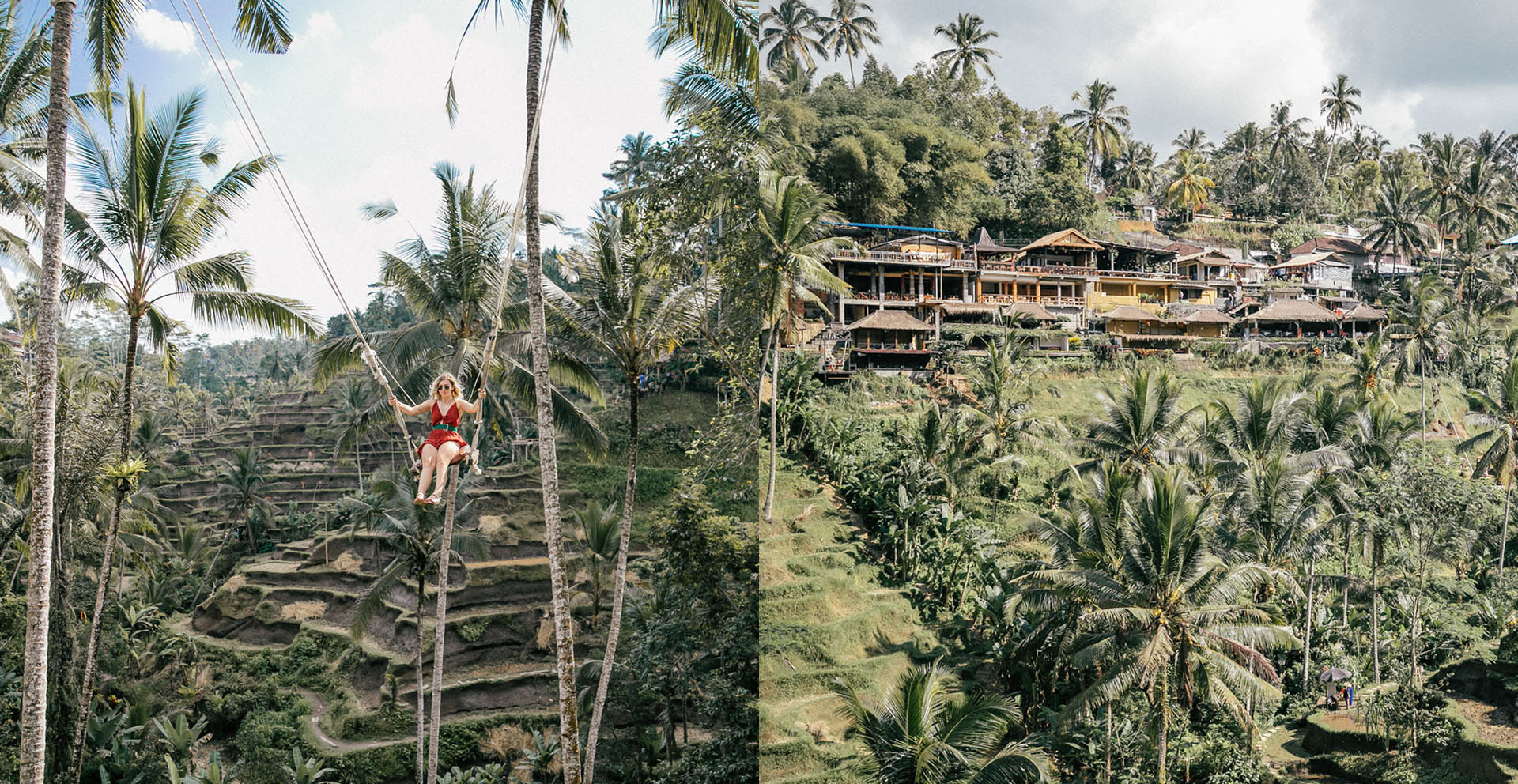 palmiers - Voyage à Bali : Itinéraire, activités et hôtels