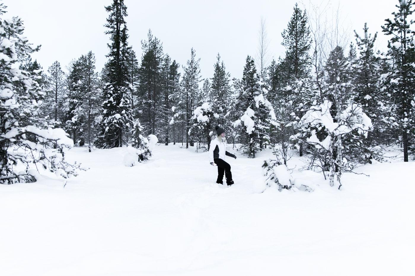 ID5A5076 - Récap de notre voyage en Laponie Finlandaise