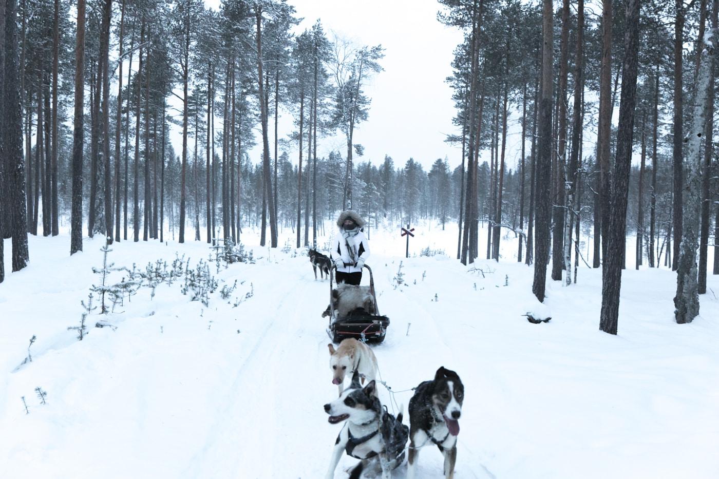 ID5A5898 - 5 activités à faire en Laponie