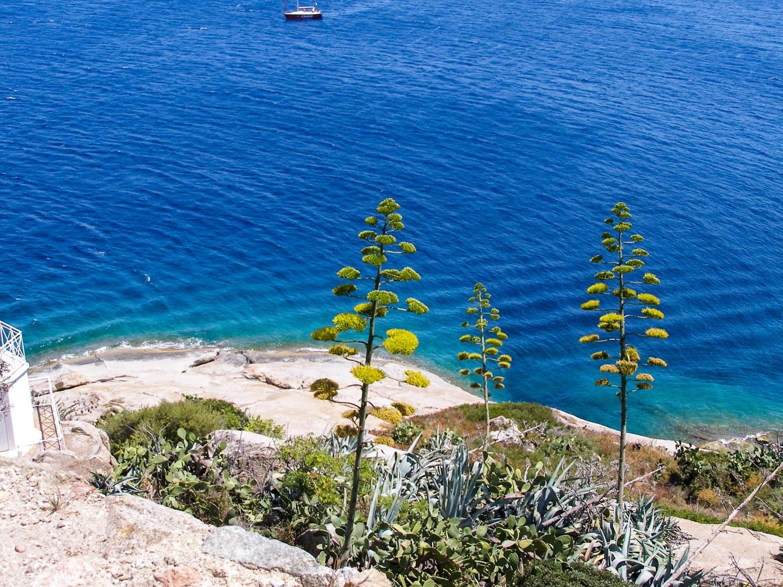 CORSE 2007 152 - Haute-Corse : Mes conseils, choses à voir, adresses...