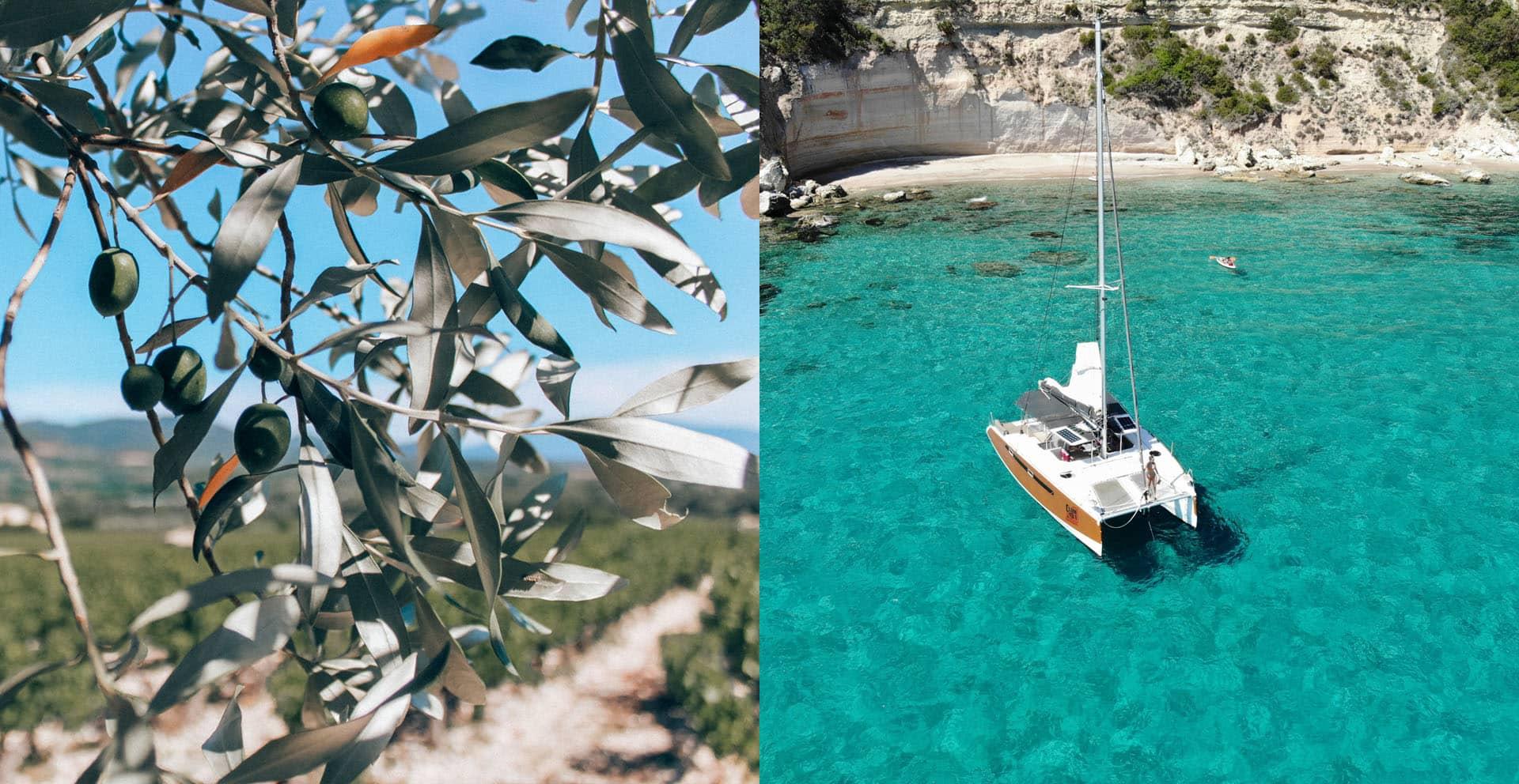 bibii - Corse du sud : Mes conseils, choses à voir, adresses...