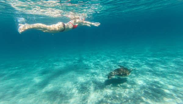 Le TOP 15 des activités à faire en Martinique