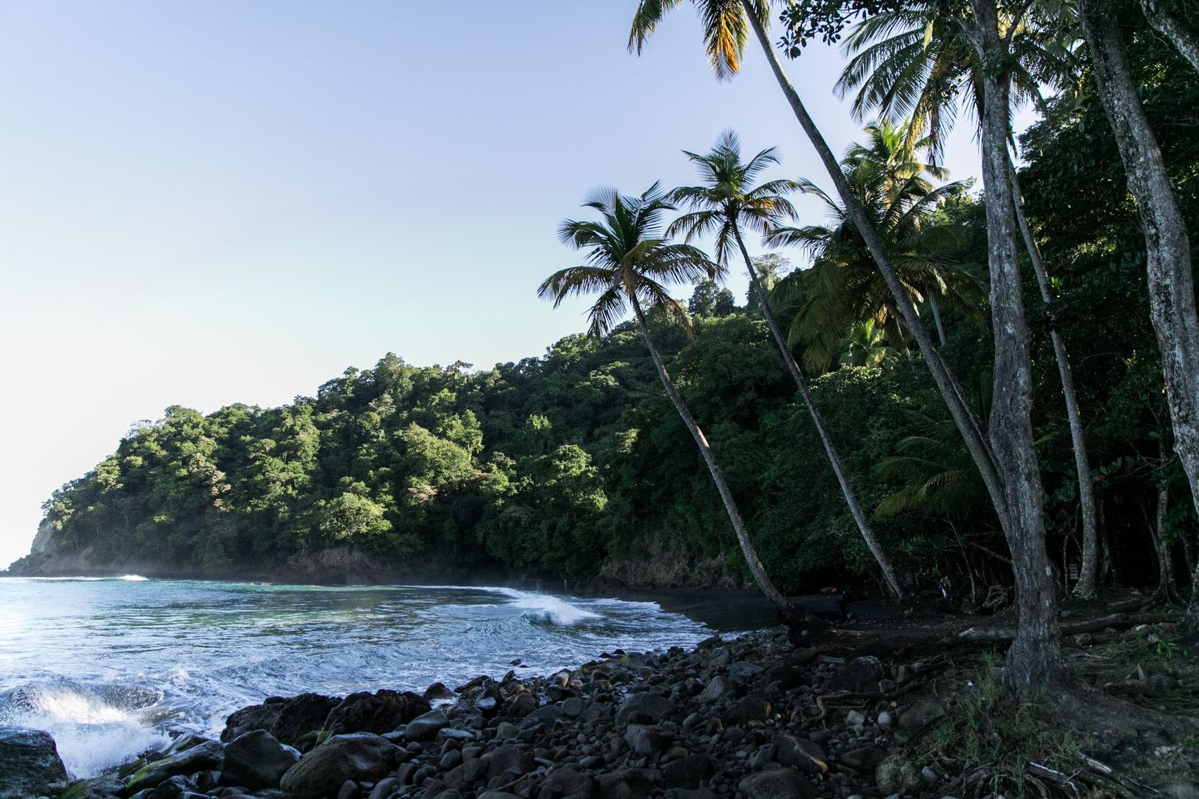 ID5A1844 2 - Voyage en Martinique : Itinéraire et conseils