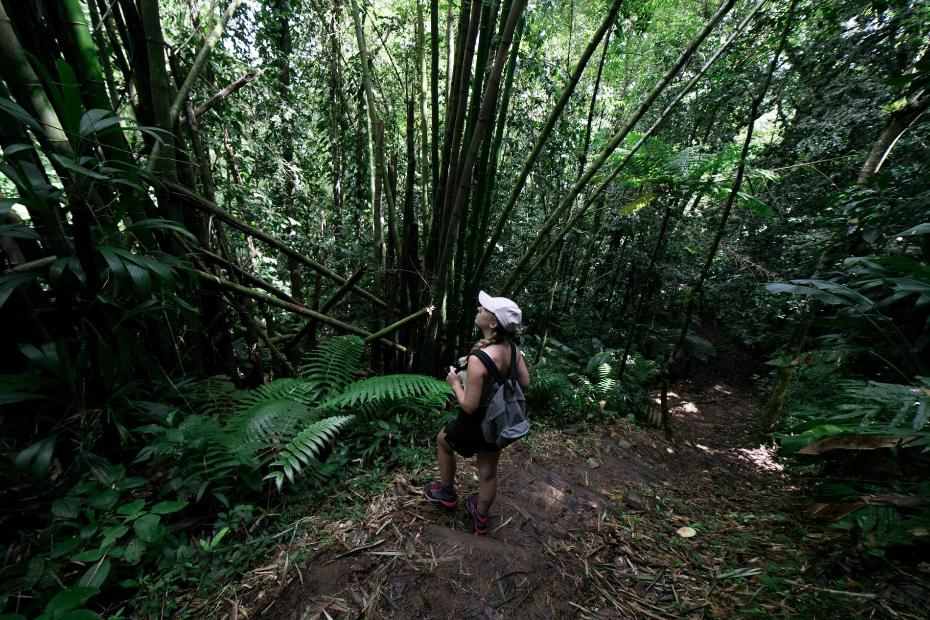 ID5A2115 - Le TOP 15 des activités à faire en Martinique