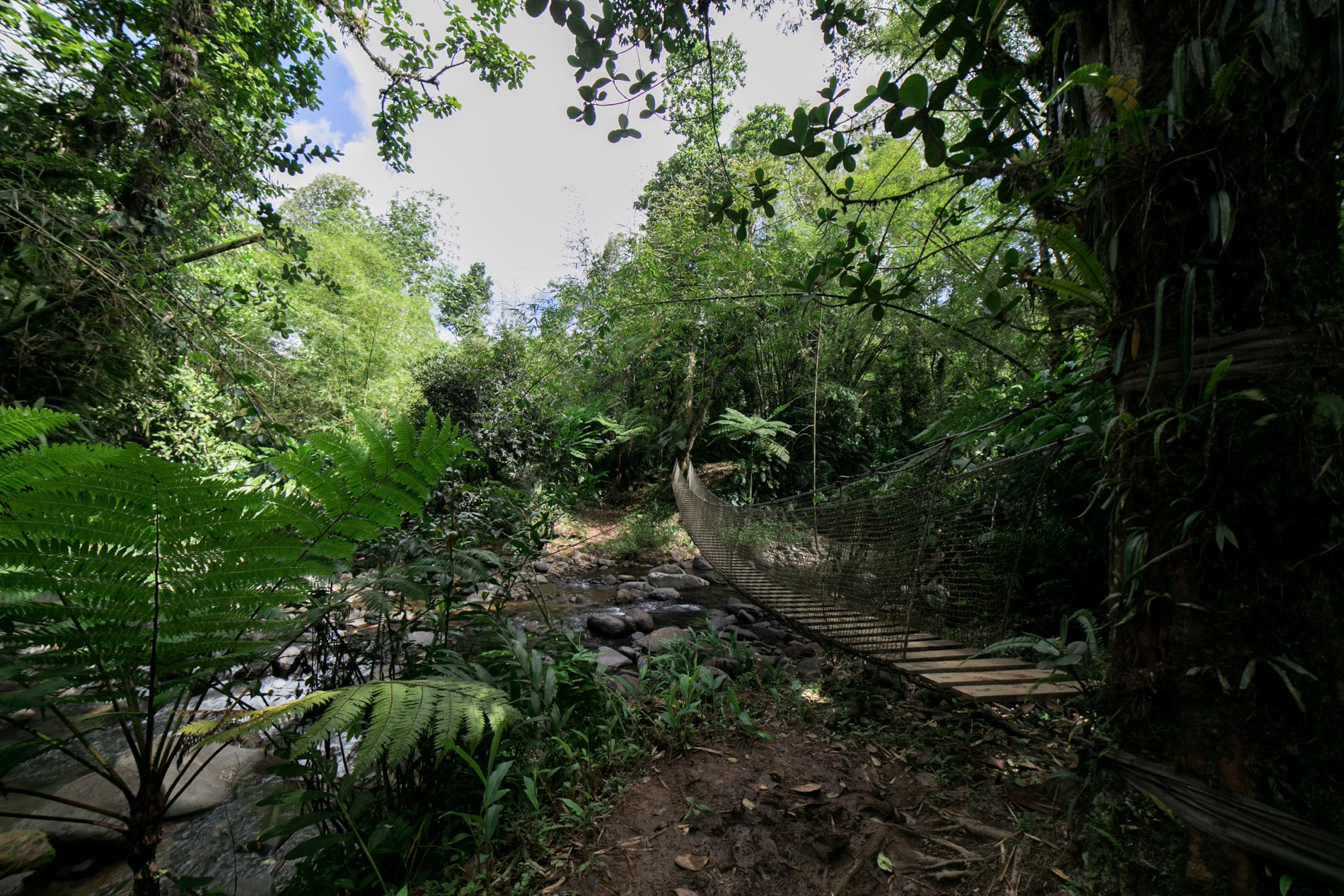 ID5A2135 - Le TOP 15 des activités à faire en Martinique