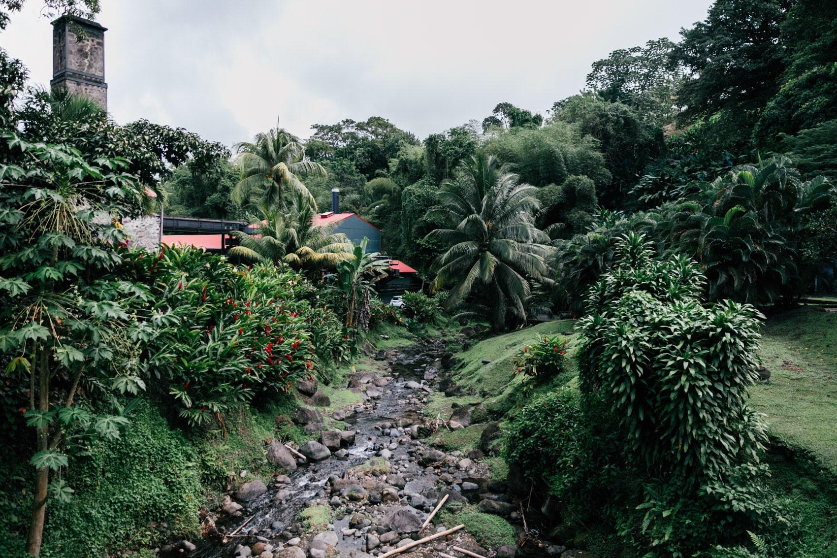 ID5A2206 - Voyage en Martinique : Itinéraire et conseils