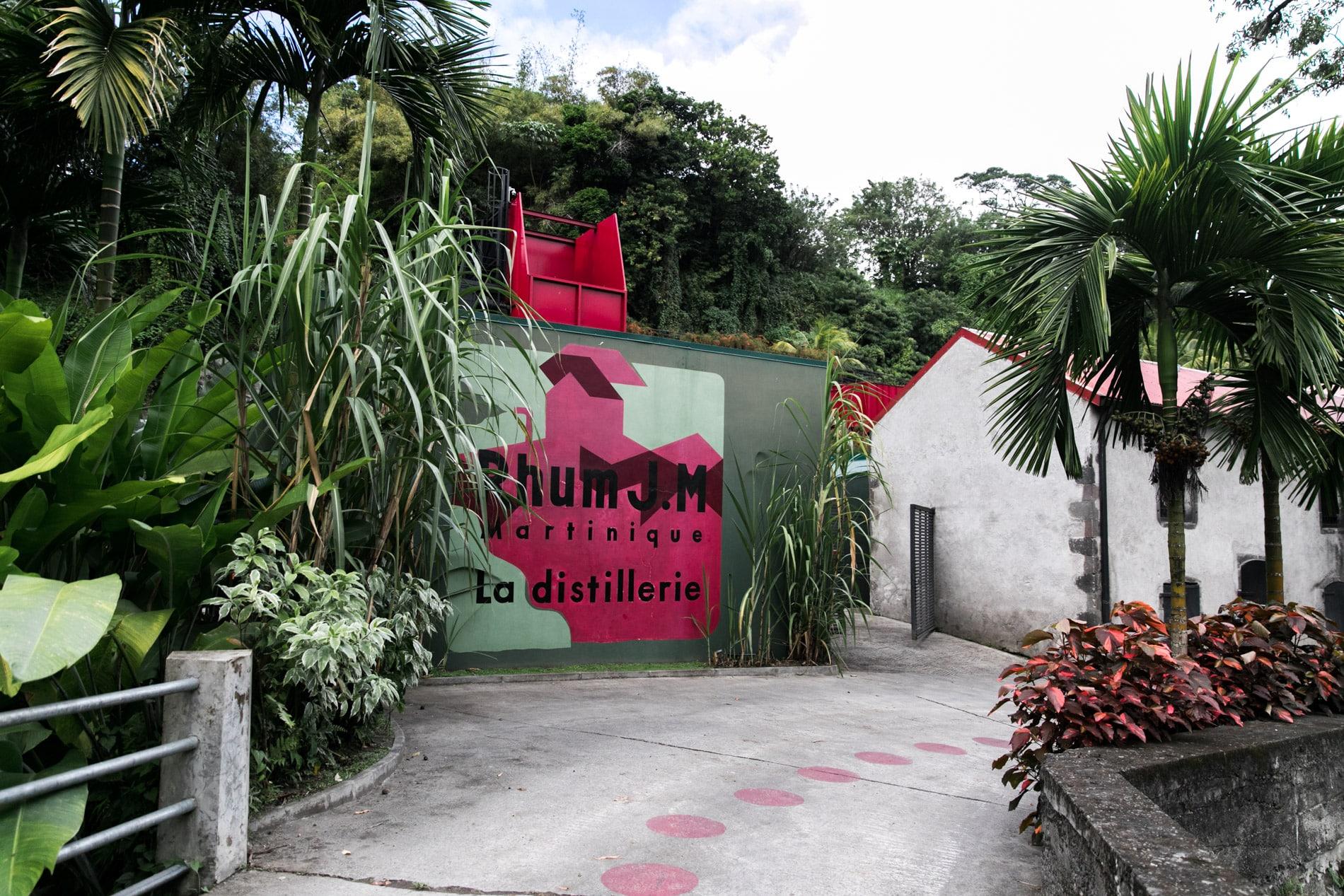 ID5A2209 2 - Le TOP 15 des activités à faire en Martinique