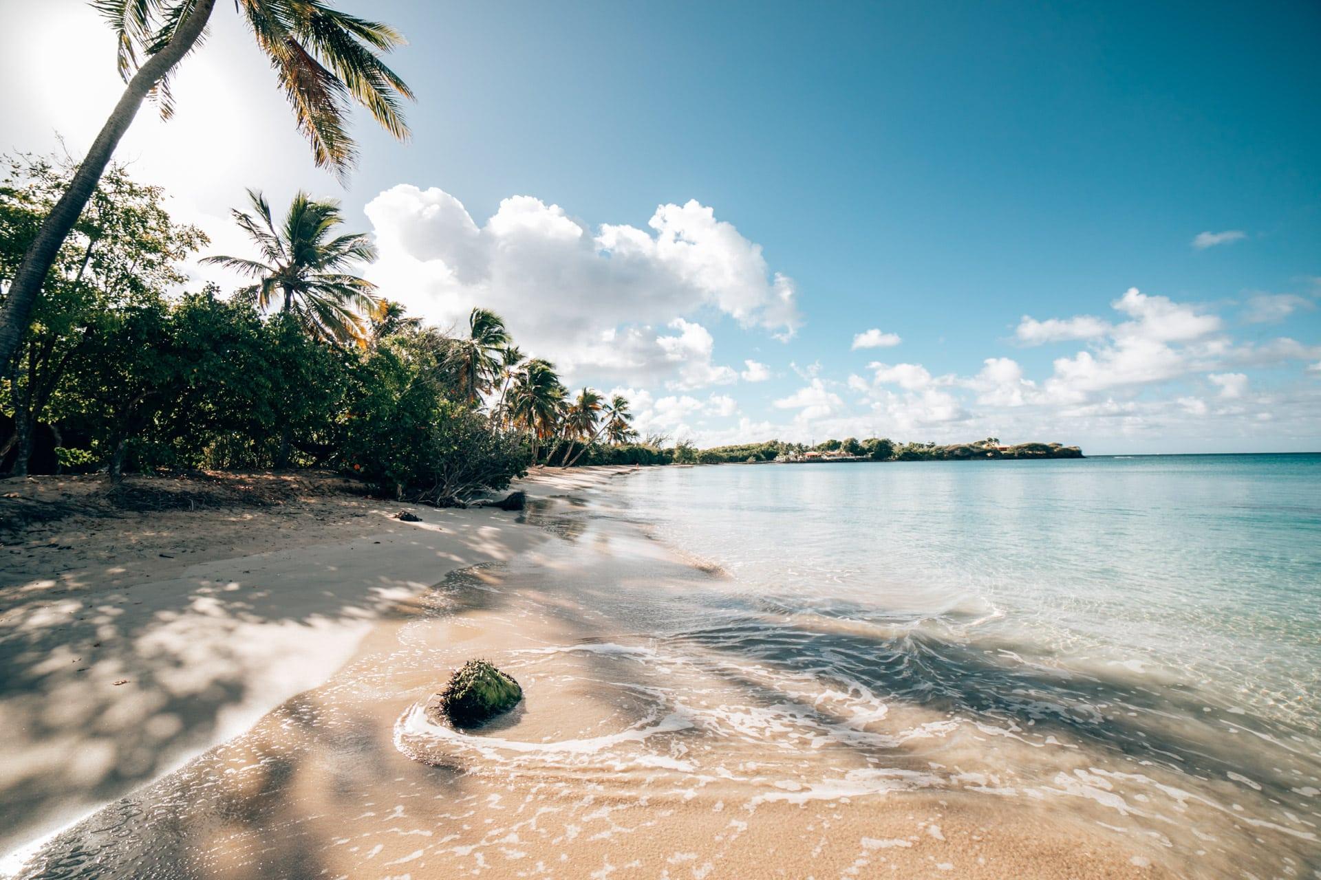 ID5A2668 - Voyage en Martinique : Itinéraire et conseils
