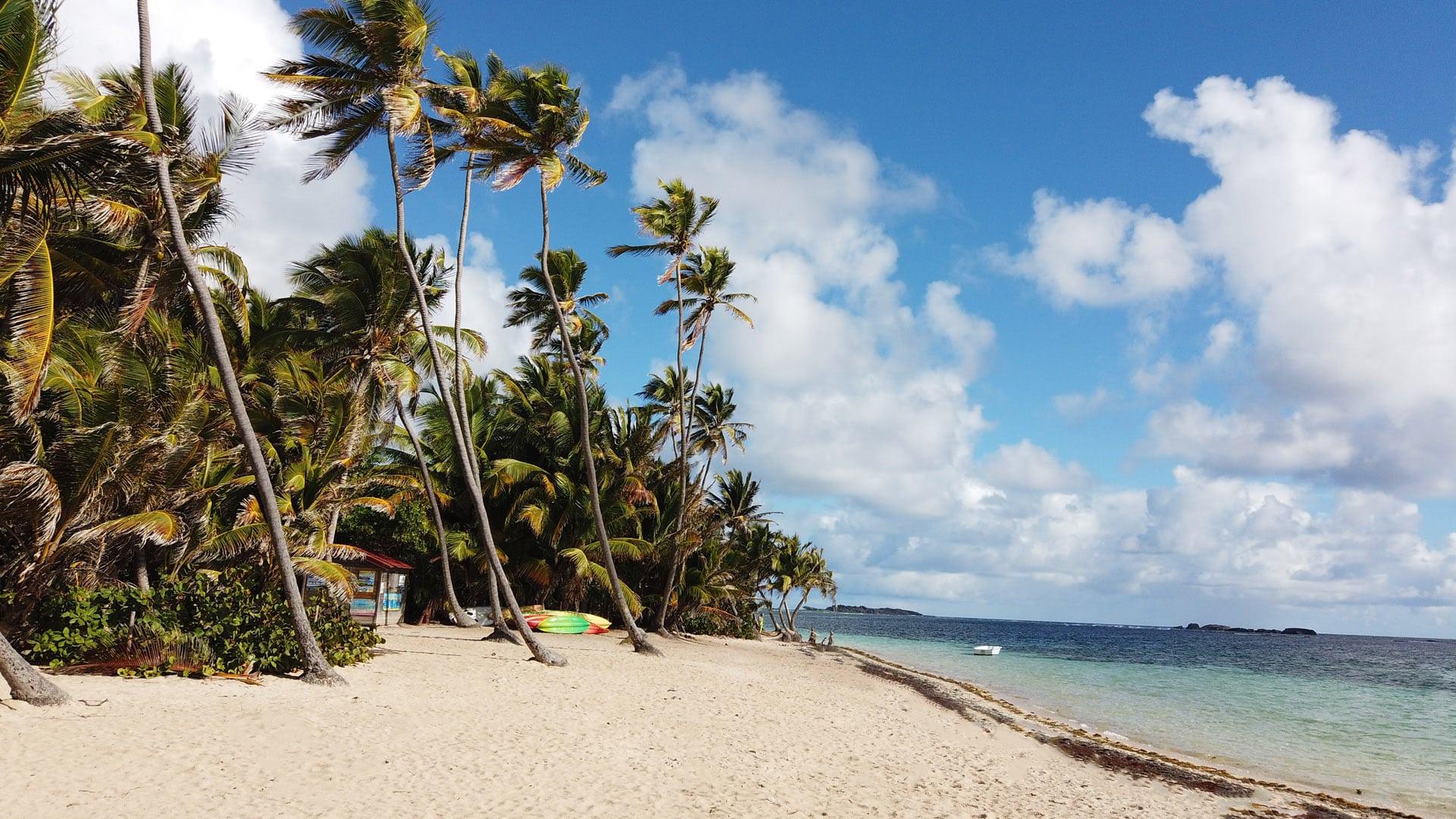 anse michel - Voyage en Martinique : Itinéraire et conseils